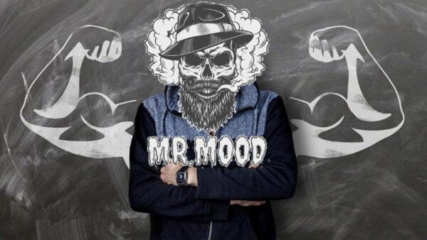 MR MOOD Кальян Украина